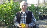 John Panzarella to Share Citrus Growing Tips at the Kingwood Garden Center