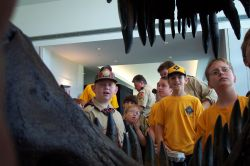 Dinosaur World unveils new exhibit at 2006 HGMS show at Humble Civic Center