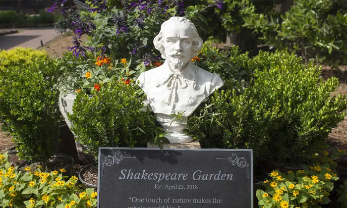Mercer's Shakespeare Garden