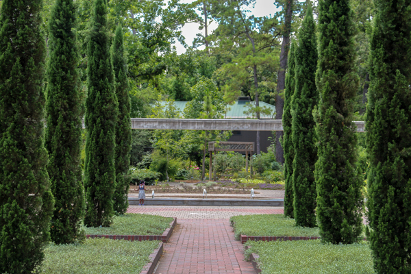 Mediterranean garden plantings such as Italian cypress trees line the existing Cypress Promenade in the Renaissance Garden