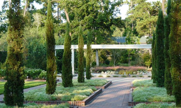 Mercer Botanic Gardensu0027 Renaissance Garden Progresses